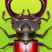 Forest Bugs (NEW Game)