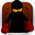 Ninja Boxing