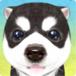 Awesome Dog Simulator