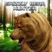 Bear Hunting Game