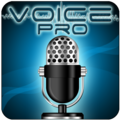 Voice PRO (makes 8k per month)