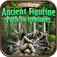 Hidden Object: Ancient Figurine - Path to Treasures