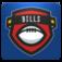 Buffalo Football FanSide