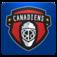 Montreal Hockey FanSide