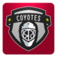 Phoenix Hockey FanSide
