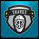 San Jose Hockey FanSide