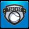 Toronto Baseball FanSide