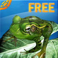 Tap Turtle Fun Game for all Ages